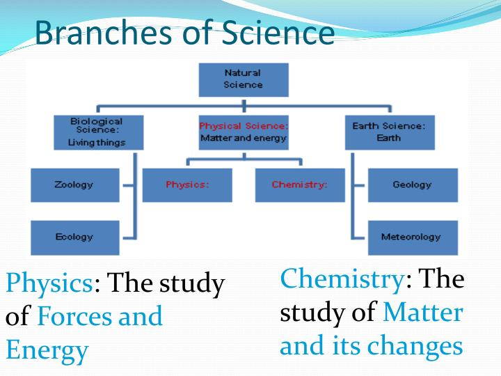 Branches of Science
