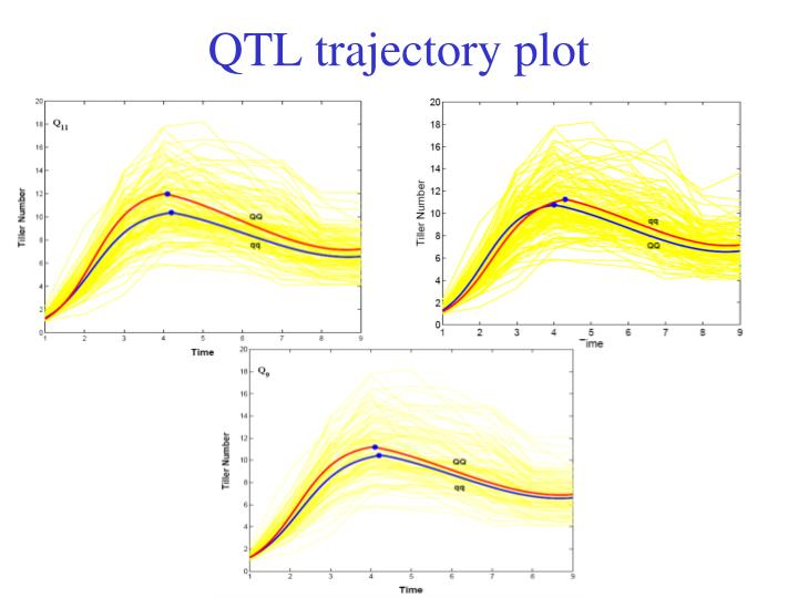 QTL trajectory plot