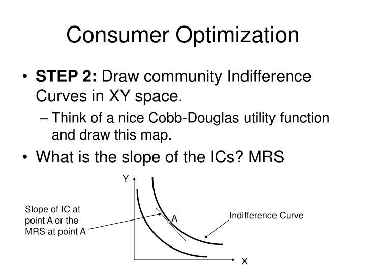 Consumer Optimization