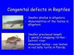 congenital defects in reptiles
