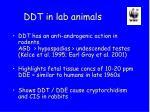 ddt in lab animals