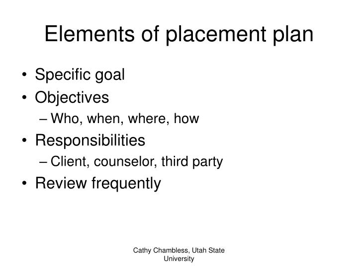 Elements of placement plan