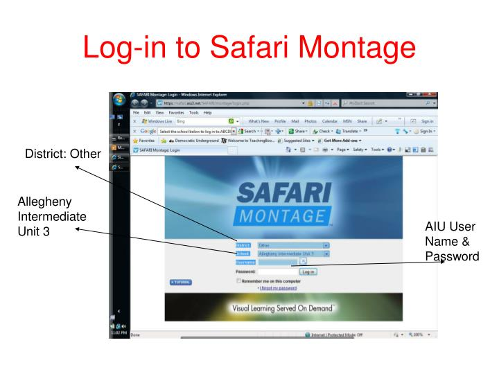 Log-in to Safari Montage