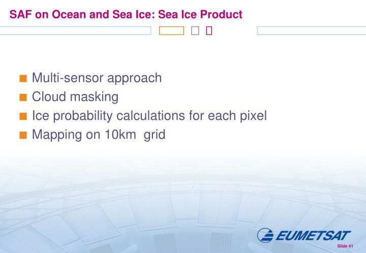 SAF on Ocean and Sea Ice: Sea Ice Product