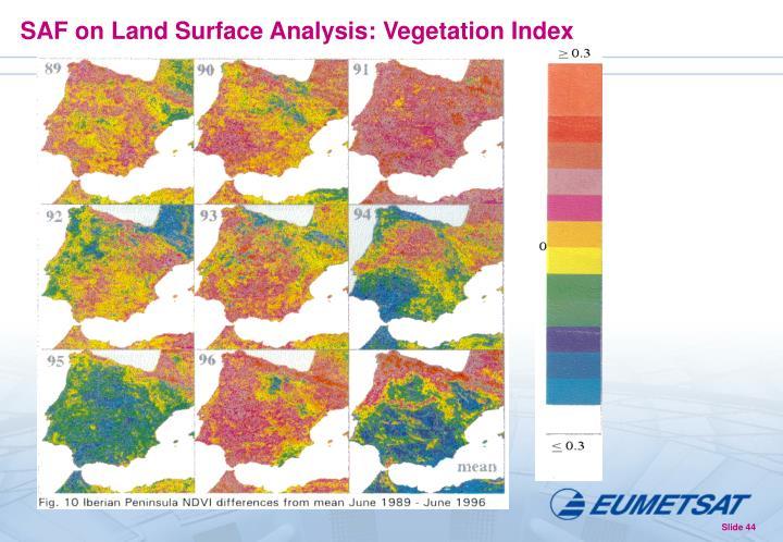 SAF on Land Surface Analysis: Vegetation Index