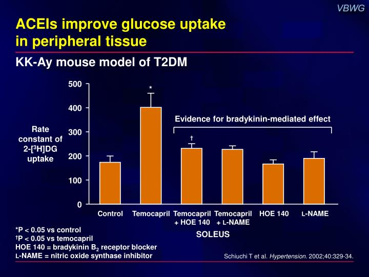 ACEIs improve glucose uptake