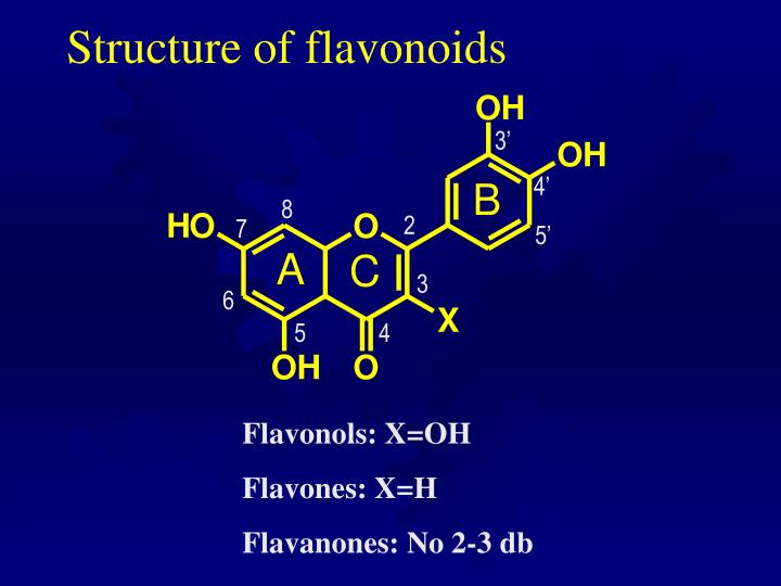 Structure of flavonoids