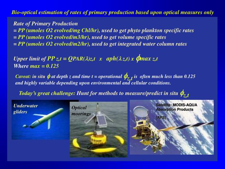 Bio-optical estimation of rates of primary production based upon optical measures only