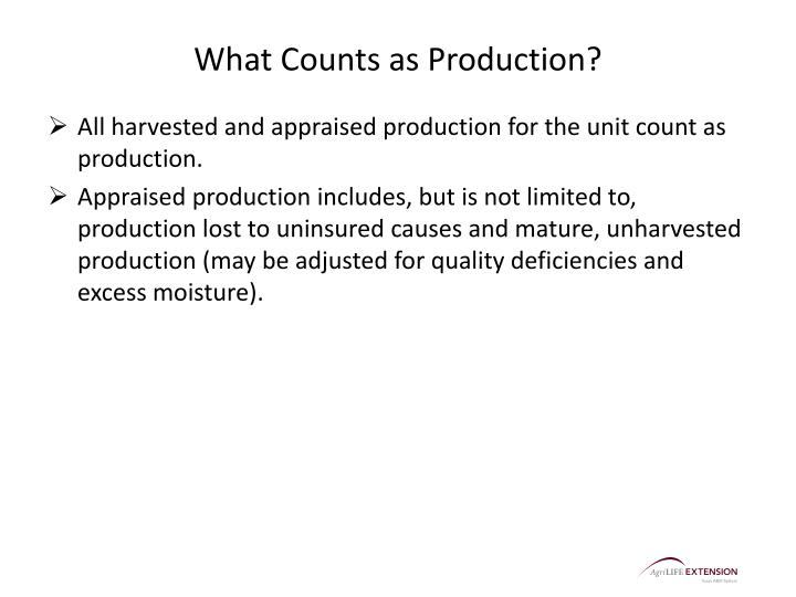 What Counts as Production?