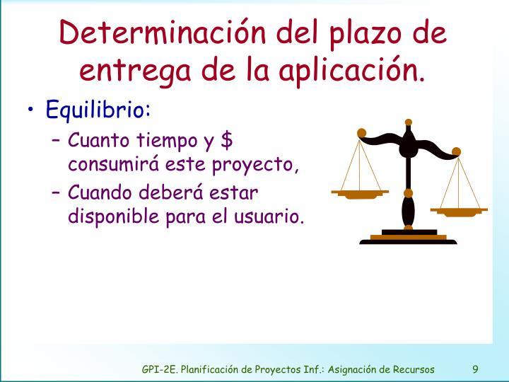 Determinación del plazo de entrega de la aplicación.