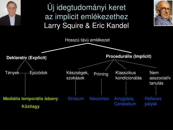 Új idegtudományi keret