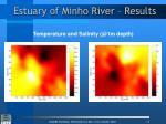estuary of minho river results1