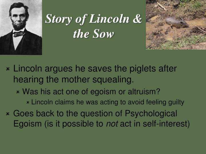 Story of Lincoln & the Sow