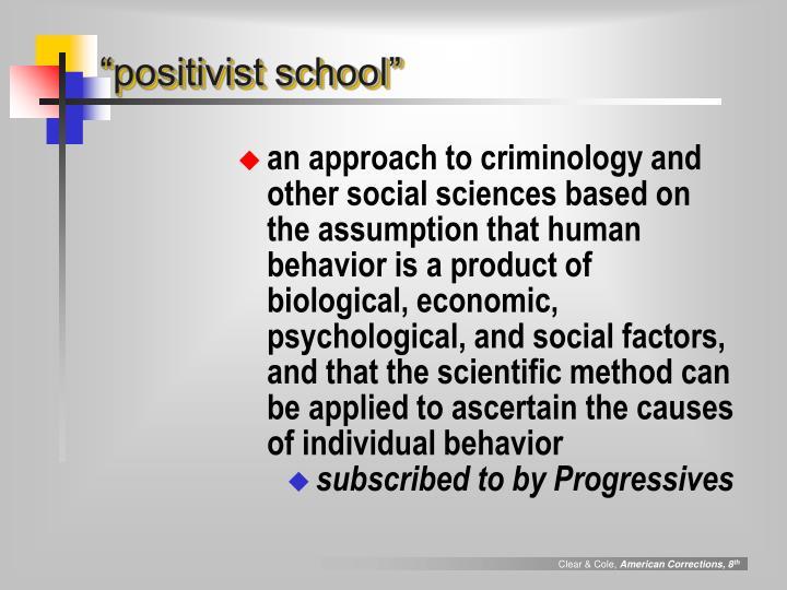 """positivist school"""