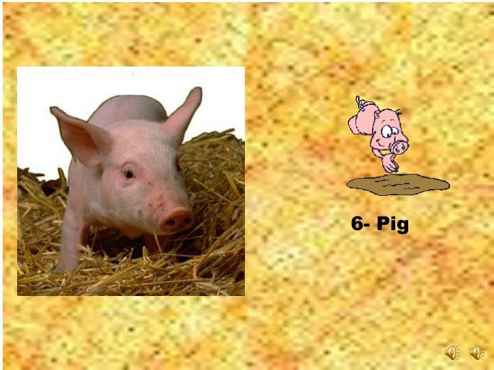 6- Pig