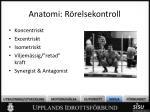 anatomi r relsekontroll