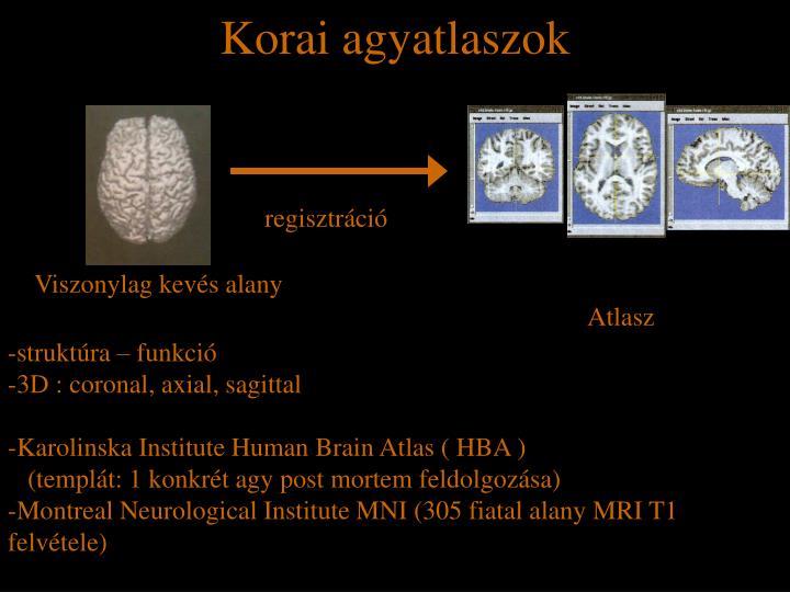 Korai agyatlaszok
