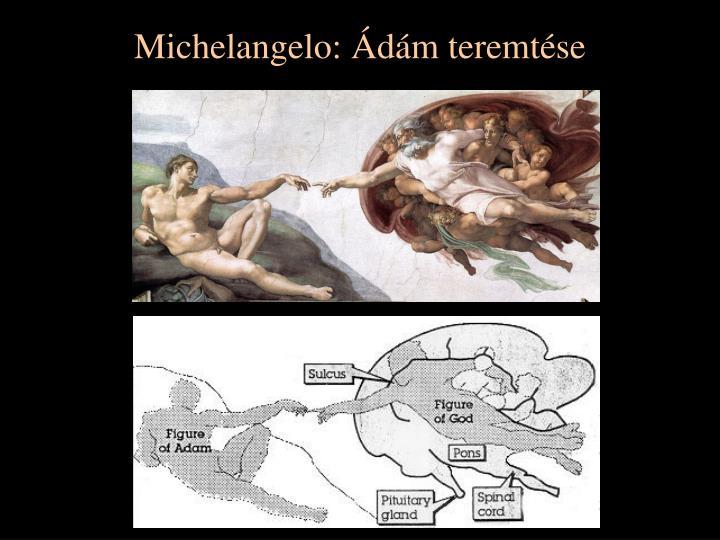 Michelangelo d m teremt se