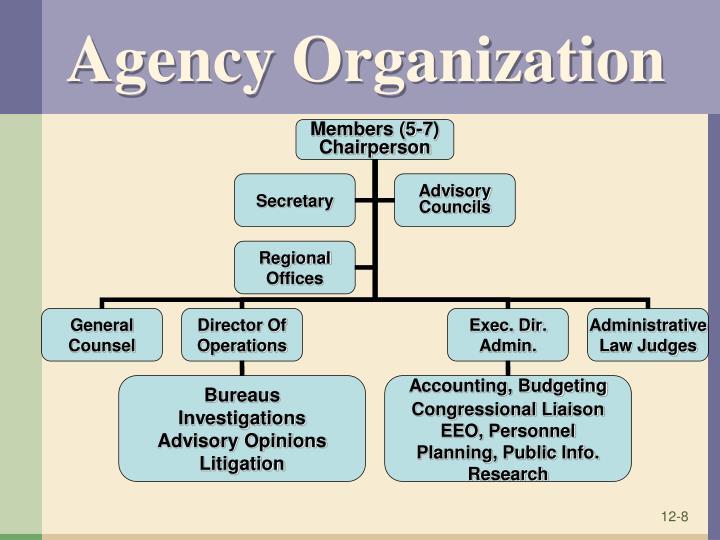 Agency Organization