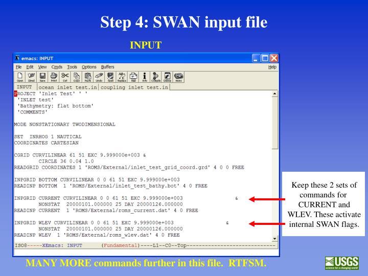 Step 4: SWAN input file