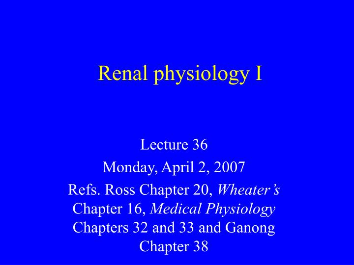 Ppt renal physiology i powerpoint presentation id3259050 renal physiology i toneelgroepblik Choice Image