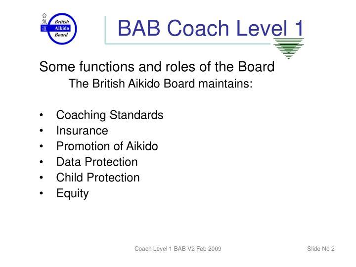 Bab coach level 11