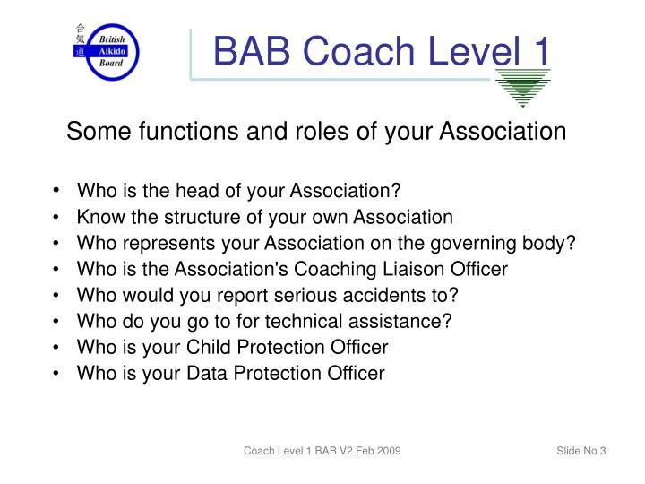 Bab coach level 12
