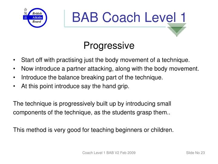 BAB Coach Level 1