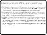 regulatory elements of the eukaryotic promoter