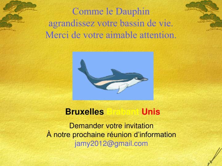 Comme le Dauphin