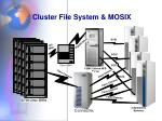 cluster file system mosix
