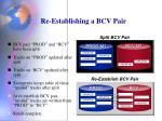 re establishing a bcv pair