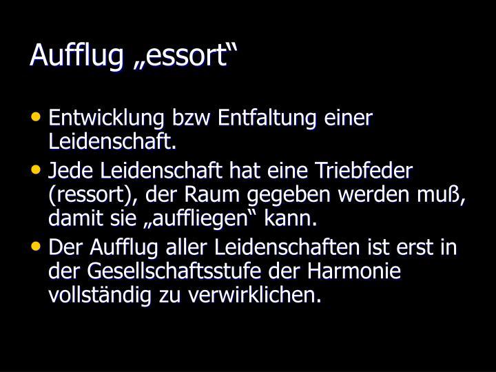 """Aufflug """"essort"""""""