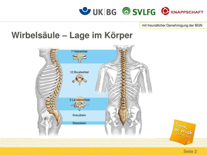 PPT - VII. Anatomie – Passive Strukturen des Rückens PowerPoint ...