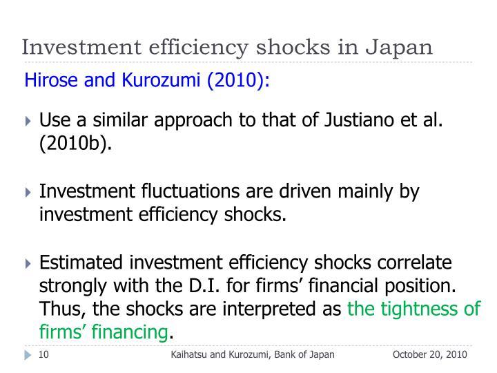 Investment efficiency shocks in Japan