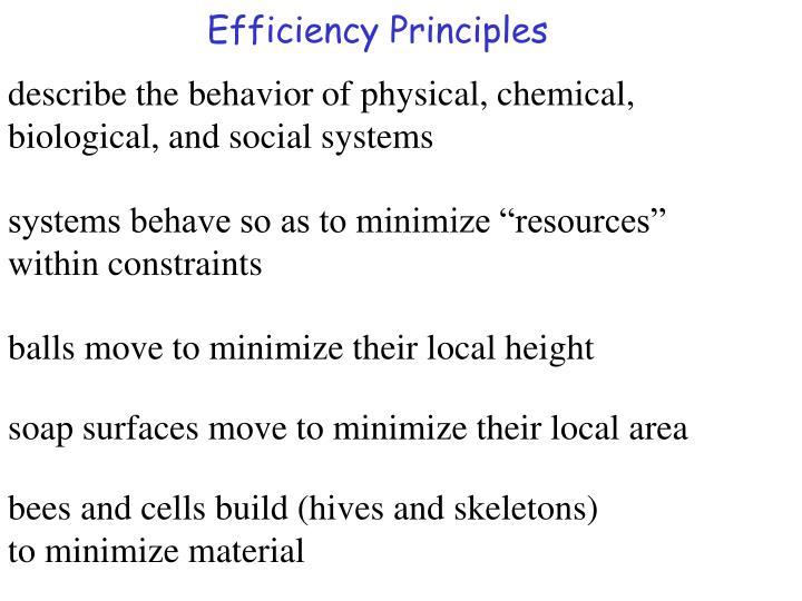Efficiency Principles