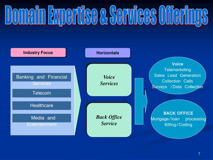 Domain Expertise & Services Offerings