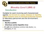 biosafety level 1 bsl 1 introduction