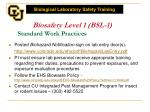 biosafety level 1 bsl 1 standard work practices1