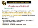 biosafety level 2 bsl 2 introduction