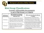risk group classifications1