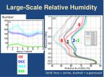 large scale relative humidity