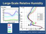 large scale relative humidity1