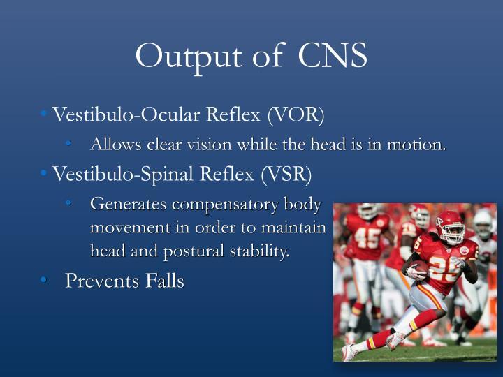 Output of CNS