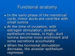 functional anatomy8
