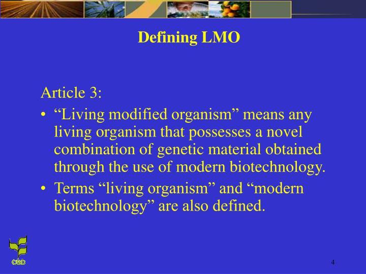 Defining LMO