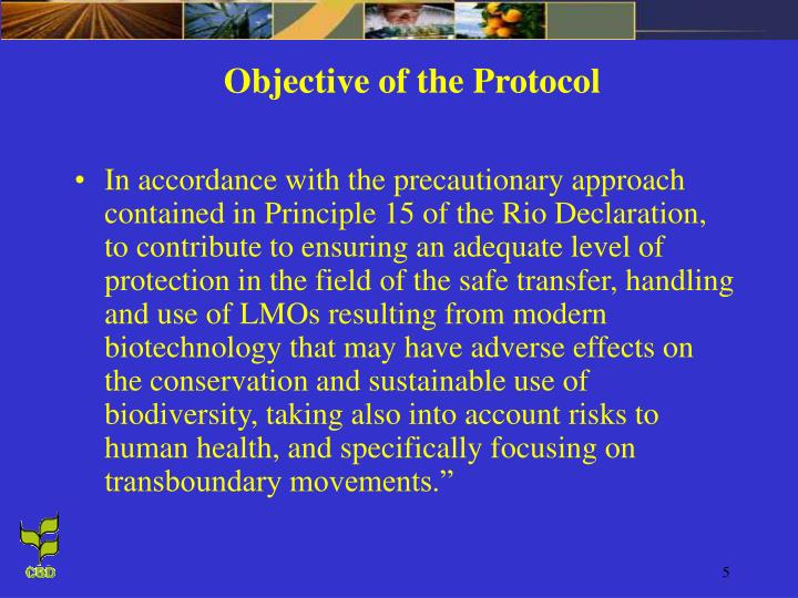 Objective of the Protocol