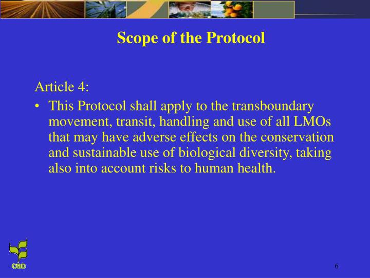 Scope of the Protocol
