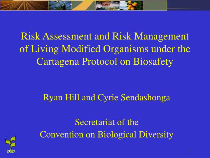 Risk Assessment and Risk Management of Living Modified Organisms under the Cartagena Protocol on Bio...