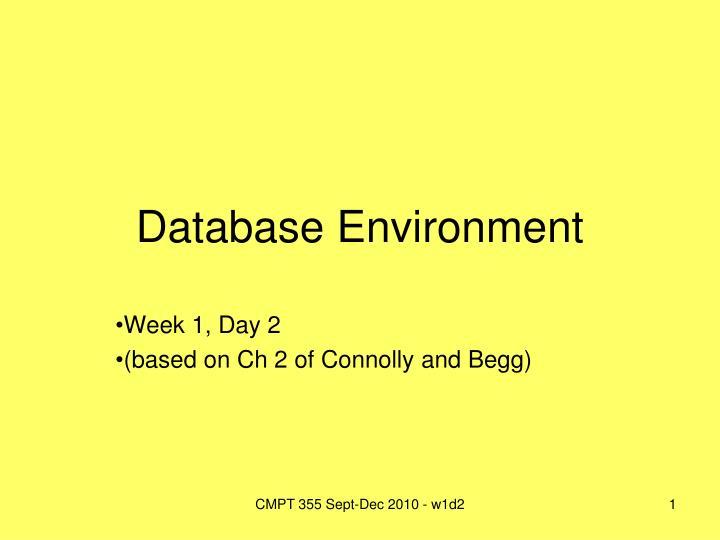 database environment n.